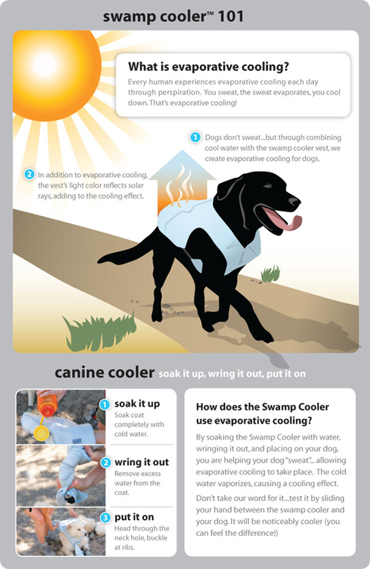 Help your dog beat the heat with this innovative cooling vest. Just soak it in cold water, wring it out, and fasten around your dog. Evaporative cooling (like an