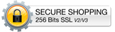 Secure 256bit Encryption