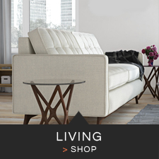 Modern Living Room Furniture & Decor