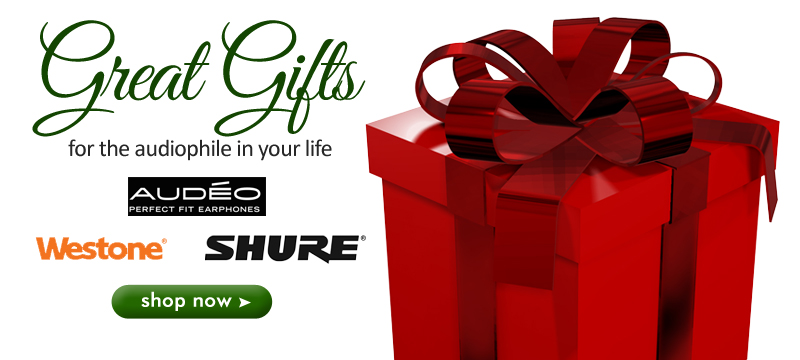 Great Gift Ideas for 2013 Holiday