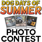 Jeep Dog Days of Summer 2017 Photo Contest