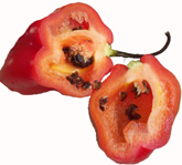 Inca's Food Rocoto Red Hot Chili Peppers