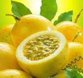 Buy Universal Passion Fruit Nectar