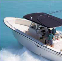 Clean and protect the boat bimini top and fabric enclosures with 303 Fabric Cleaner and High Tech Fabric Guard.