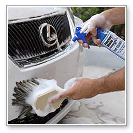 The boar's hair wash brush has feathered bristles that will not scratch the paint.l