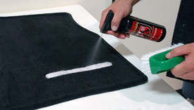 Spray carpet liberally with Wolfgang Spot Eliminator.