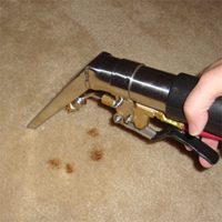 Pretreat with a carpet cleaner. Press the trigger to release hot water.