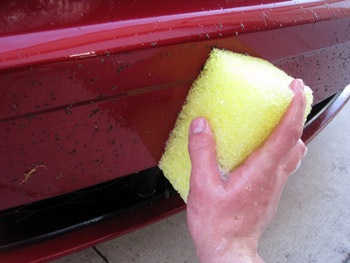 BLACKFIRE Bug and Tar Eliminator Sponge removes bug guts without scratching paint