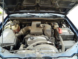 McKee's 37 Trim Detailer works great to dress up the appearance of dull engine bays
