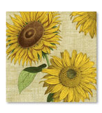 Beverage Napkins Sunflower 20 Pc