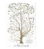 Tree of Life Poster Print-Laminated