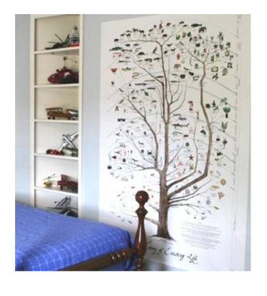 Tree Of Life Print Wall Mural 4ft X 6 Ft. Click To Enlarge Part 93