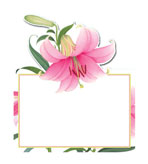 Unique Place Cards Lillies Placecard Pak 8