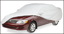 Covercraft Noah custom car cover.