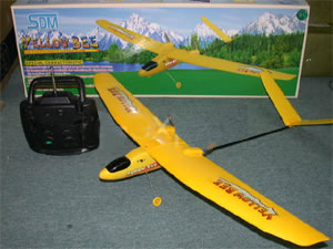 Yellow Bee twin engine airplane