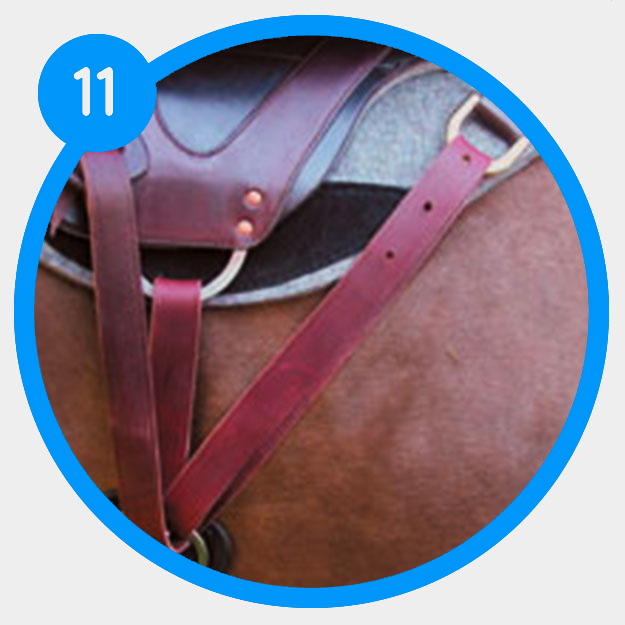 How to determine the rigging of your saddle