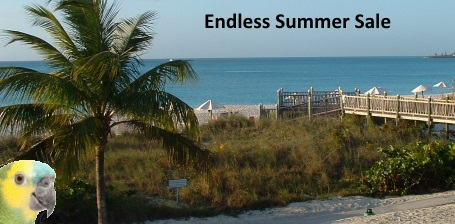FunTime Birdy Endless Summer Sale