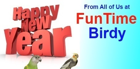 FunTime Birdy Happy New Year Sale