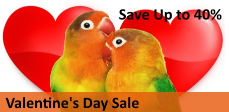Valentine's Day Sale at FunTime Birdy