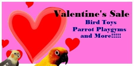 FunTime Birdy Valentine's Day Sale