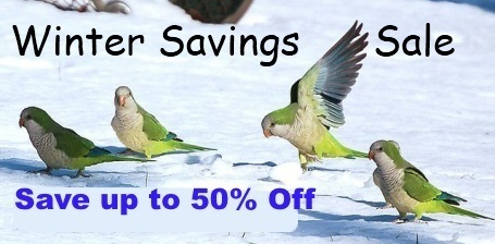 FunTime Birdy Winter Savings Sale
