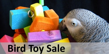Bird Toys on Sale at FunTime Birdy
