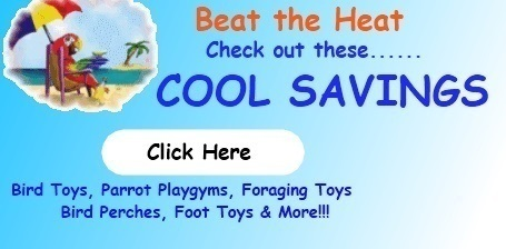 FunTime Birdy Beat the Heat  Sale