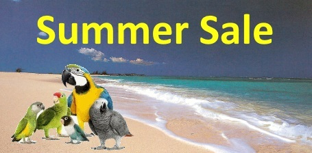 FunTime Birdy Summer Sale is Here
