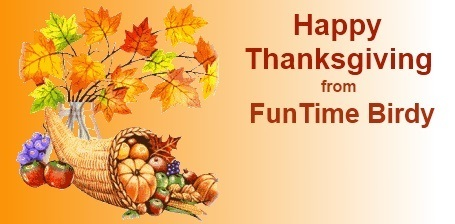 FunTime Birdy Happy Thanksgiving Sale