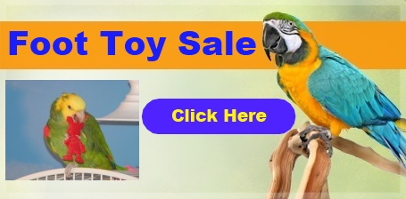 FunTime Birdy Birdie Foot Toys on Sale