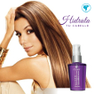 L'EUDINE ULTRA HAIR POLISHER