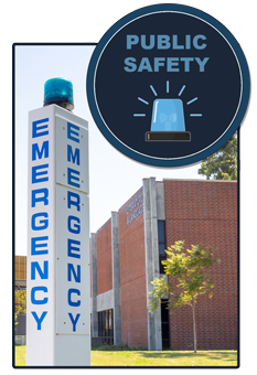 RATH® Security Public Safety Blue Light Phones, Call Boxes and Duress Systems
