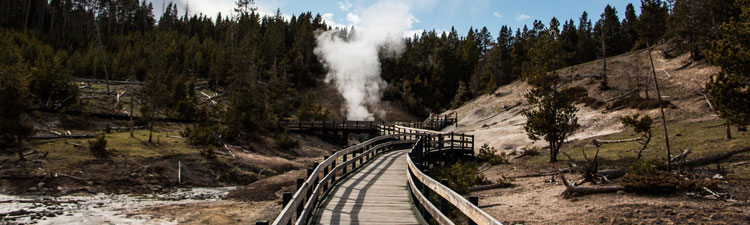 Yellowstone geyser boardwalk
