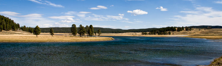Yellowstone Hayden valley