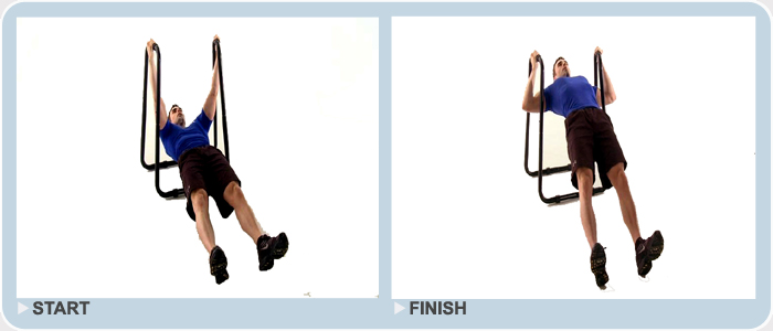 body weight rows in plank position on dip station
