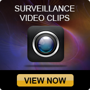 Surveillance Video Clips