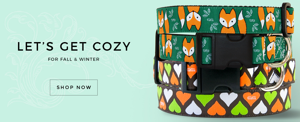 Cozy Dog Collars for Fall and Winter By GwenGear San Francisco.