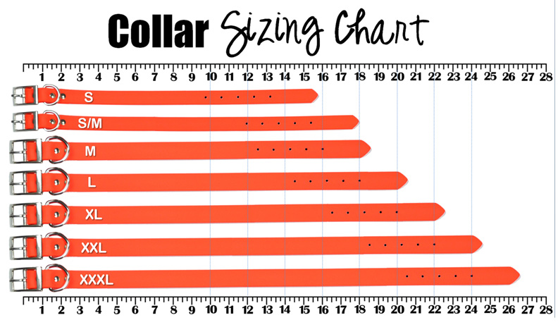 Bully Collar Sizing