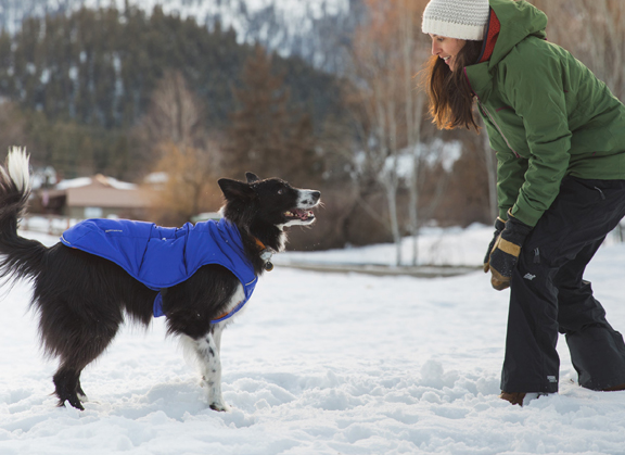 Best Dog Winter Coat Ruffwear Quinzee