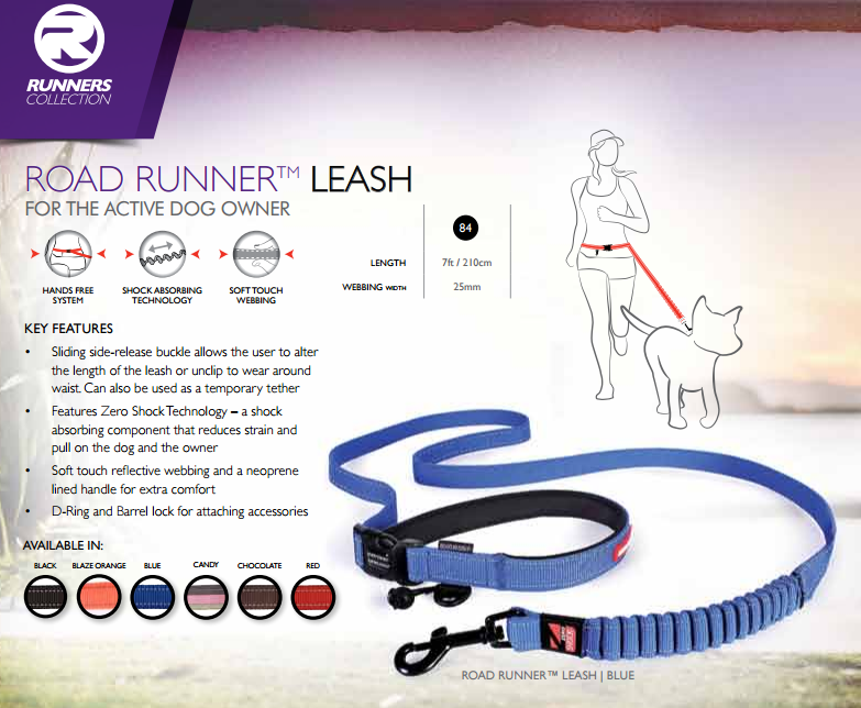 RoadRunner Leash