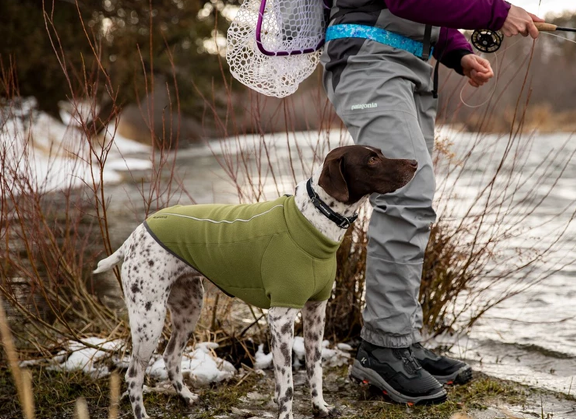 Best Dog Winter Coat Ruffwear Climate Changer