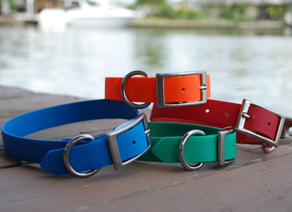 SaltyDog Waterproof Dog Collar