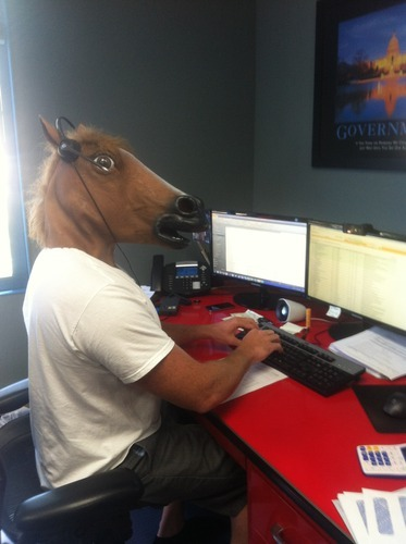 Funny Horse Head pictures